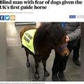"""英国で初となる""""盲導馬""""(画像は『London Evening Standard 2018年2月6日付「Blind man with fear of dogs given the UK's first guide horse」(John Pinto)』のスクリーンショット)"""