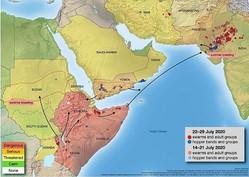 (図表1)サバクトビバッタの進出状況(2020年7月現在、FAOの公式サイトより)