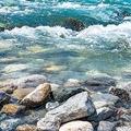 高知・下田川で小2男児が溺死 事故扱いに父親が疑問「違和感しか」