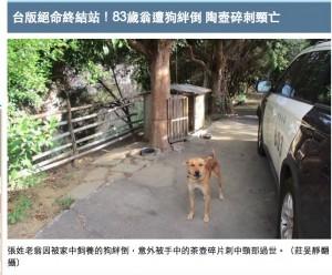 [画像] 【海外発!Breaking News】 愛犬がじゃれて転倒 割れた急須の破片が首に刺さり男性死亡(台湾)