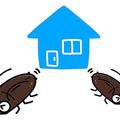 ゴキブリがいない家 5つの条件