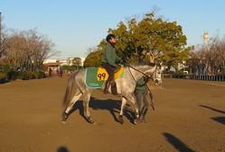 【京都牝馬S】アルーシャ 藤沢和師「昨年はゴチャつく場面も」