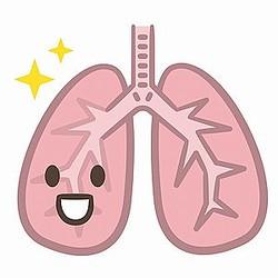 中国のポータルサイトに「日本人の平均寿命が長年世界一を保っているのは、肺を大切にしているからだ」とする記事が掲載された。(イメージ写真提供:123RF)