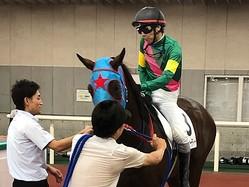 土曜新潟5R新馬は8番人気の伏兵タガノビューティーが差し切る