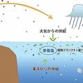 海洋表層における栄養塩の供給過程を表す概要図。(画像:海洋研究開発機構発表資料より)