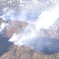 21日に発生した栃木・足利市での山火事 近隣の40世帯80人に避難勧告