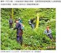 男性の捜索が行われた山(画像は『蘋果日報 2017年11月4日付「靠打火機撐7天 採�男脫困被逮」』のスクリーンショット)