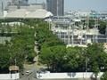 業者倒産で工事が中断した五輪会場の「有明テニスの森」、 工事は最後の追い込みへ  - 東京商工リサーチ(TSR)