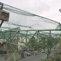 台風15号被害のゴルフ場 倒れた鉄柱の撤去始まる