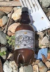日本海海岸で発見された大同江生ビール