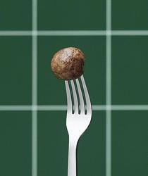 """イケアの新グルメは""""肉を使わないミートボール""""!?「プラントボール」10月に誕生"""