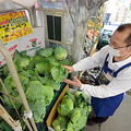 キャベツは今週、299円(税抜き)まで上がった=宮城県石巻市大街道北のスーパー「あいのや」