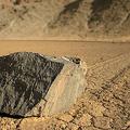 恐竜絶滅の謎 さまよう岩で解明?