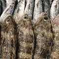 中国メディアは、日本人長寿の原因を「日本の海鮮市場」で見つけたとする記事を掲載した。(イメージ写真提供:123RF)