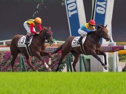 【東京5R/2歳新馬】キングカメハメハ産駒 ランフォザローゼスがデビューV!