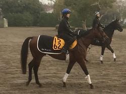 【カペラS】ブラゾンドゥリス 菜七子「いいところを引き出せるような競馬を」