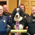 米コロラド州で「犬の名誉市長」が誕生 就任早々「職権乱用」してしまう?