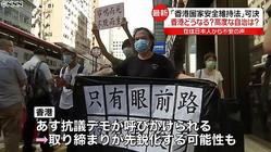 香港国家安全維持法が可決 香港どうなる?