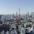 憧れの東京生活のはずが...