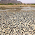 インド・ラジャスタン州アジメル付近で、干上がった湖(2019年6月2日撮影、資料写真)。(c)Himanshu SHARMA / AFP