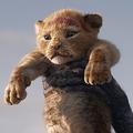 190729-lionking
