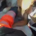 岩の割れ目に頭が挟まった犬、2時間以上かけ救助される スペイン