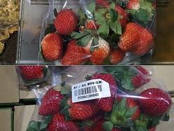 規定を満たさない残留農薬が検出された日本産イチゴ=食品薬物管理署提供