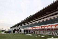 3月15日〜19日も大井競馬は無観客で開催