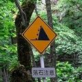 「落石注意」の標識! 「危険」なのはわかるけどクルマは「何に」気を付ければいいのか?