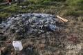 インド・ウッタルプラデシュ州で、集団レイプを受け死亡したとされる19歳の女性が火葬された場所(2020年9月30日撮影)。(c)Prakash SINGH / AFP