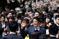 【郄橋 洋一】「桜を見る会」批判があまりに的外れな理由 確かに、改めるべき点はあるが