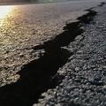 阪神大震災から25年 今も残る被災時の性犯罪問題における課題