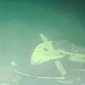 インドネシア・バリ島沖の海底で見つかった同国海軍の潜水艦「KRIナンガラ402」。インドネシア軍提供(2021年4月25日撮影、公開)。(c)AFP PHOTO/Indonesia Military