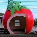 「フルーツバス停」誕生の背景