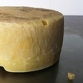 人の「脇の下」でつくられたチーズ バクテリアの重要性を示す