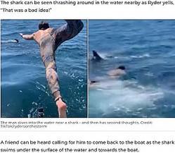 おとなしい「ウバザメ」だと思い飛び込んだ男性(画像は『7NEWS.com.au 2020年9月29日付「'That's not a basking shark, dude': Man swim with 'harmless' creature takes terrifying turn」(Credit: TikTok/rydersonthestorm)』のスクリーンショット)