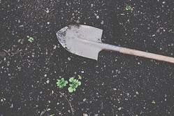 【心理テスト】庭を掘ったら○○が出現! 答えでわかる、これから実るもの