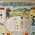 寄生虫が血管を詰まらせる奇病「日本住血吸虫」根絶に導いた医院を探索