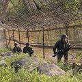 DMZで警備にあたっている兵士=24日、鉄原(聯合ニュース)