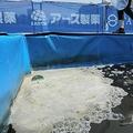 ほぼ毎日運動中止すべきレベル 東京五輪の暑さ対策の「危険さ」