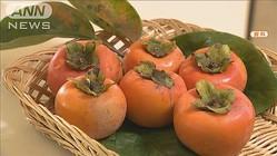 「柿渋」がコロナ無害化と発表 奈良県立医科大学