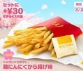 マクドナルド「シャカシャカポテト 鶏にんにくから揚げ味」発売