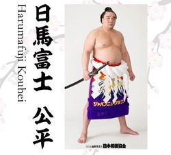 引退した元横綱・日馬富士(画像は伊勢ヶ浜部屋の公式HPから)