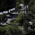 米カリフォルニア州ランチョパロスベルデスで、事故を起こし横転したタイガー・ウッズ選手の車(2021年2月23日撮影)。(c)Patrick T. FALLON / AFP