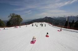 子供も大人も雪上でソリ遊び/写真は主催者提供