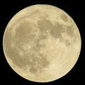 11月14日の「満月」は68年ぶりの大きさ!ウルトラスーパームーンに