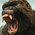 髑髏島が舞台! -『キングコング:髑髏島の巨神』より  - Warner Bros. / Photofest / ゲッティ イメージズ