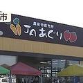 石川県の「JAあぐり」約3年にわたって毒性のあるキノコを販売