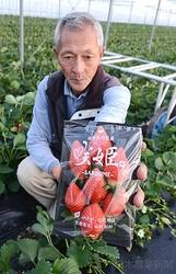 「咲姫」を掲げる中村さん。粒が大きいのも特徴だ(佐賀県白石町で)