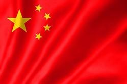 中国のネットユーザーの間で流行った言葉は?